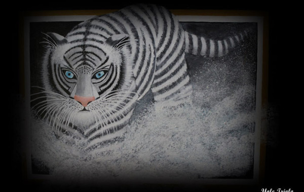 Patient Artwork